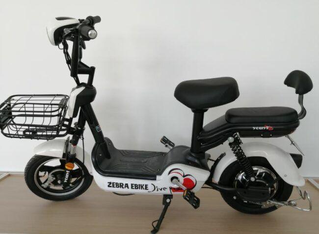 Model A Zebra Bike is chosen for Zebra Electric bike sale Johor