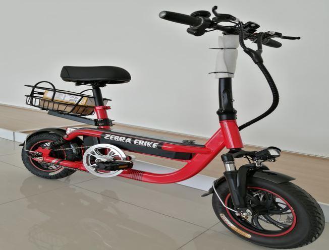 Model D Zebra Electric Bike displayed in Gelang Patah showroom.