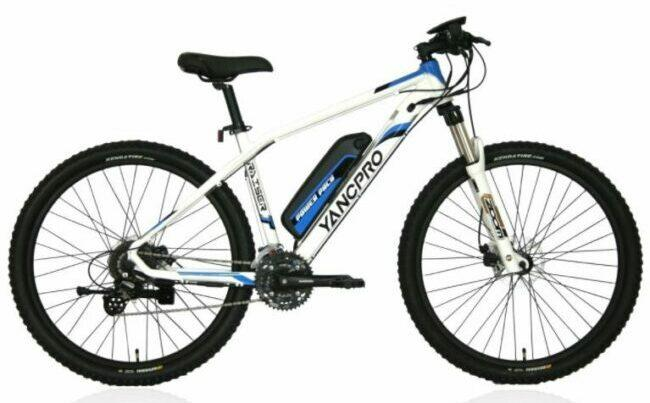 IDS Home YANCPRO as model #2 electric bikes for work