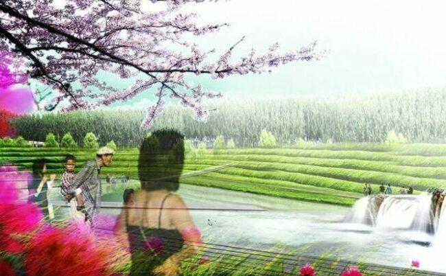 Park of the floating garden improve water quality