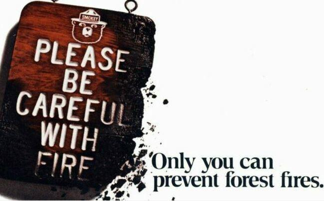 Prevent Forest Fires is our task and responsibility
