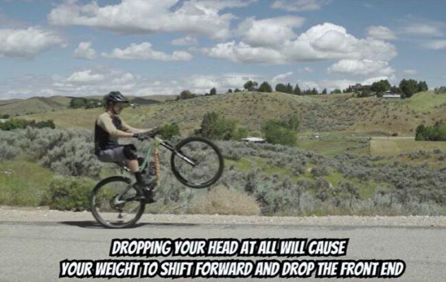 A successful wheelie posture - keep your head looking forward.