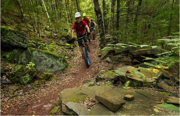 Mountain biking fun as the featured image for Schwinn Mesa 2 Adult Mountain Bike Post.