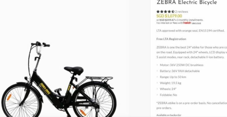 Model #1 Zebra Electric Bike for cost comparing with Zebra Ebike Model X.